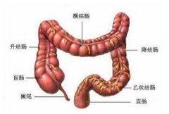 患有直肠炎有些什么症状